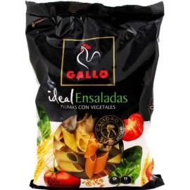 Pasta Gallo Vegetales Plumas 250 Grs