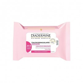 Wipes Diadermine 20 Units