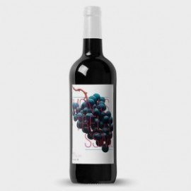 Jumilla Red Wine Monastrellissimo 4 Monthes 75 cl